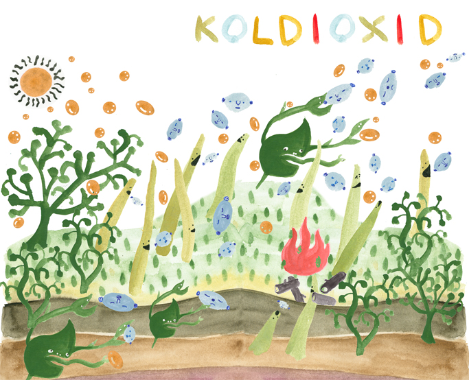koldioxid final